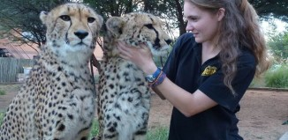 girl petting a baby leopard