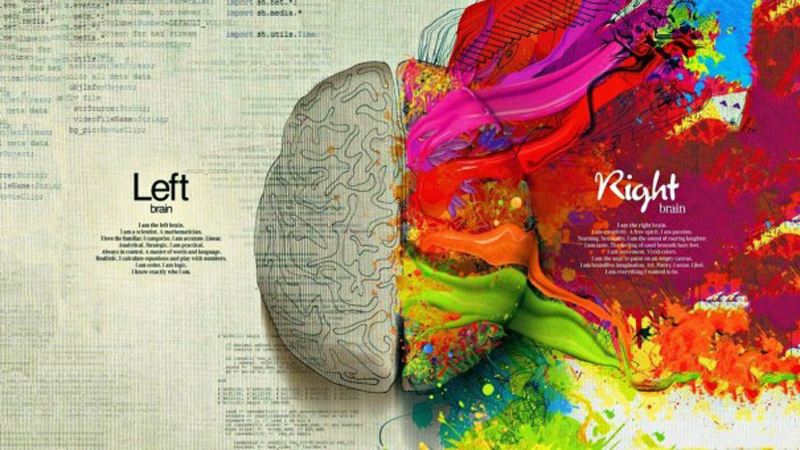 Brain-Left-and-Right