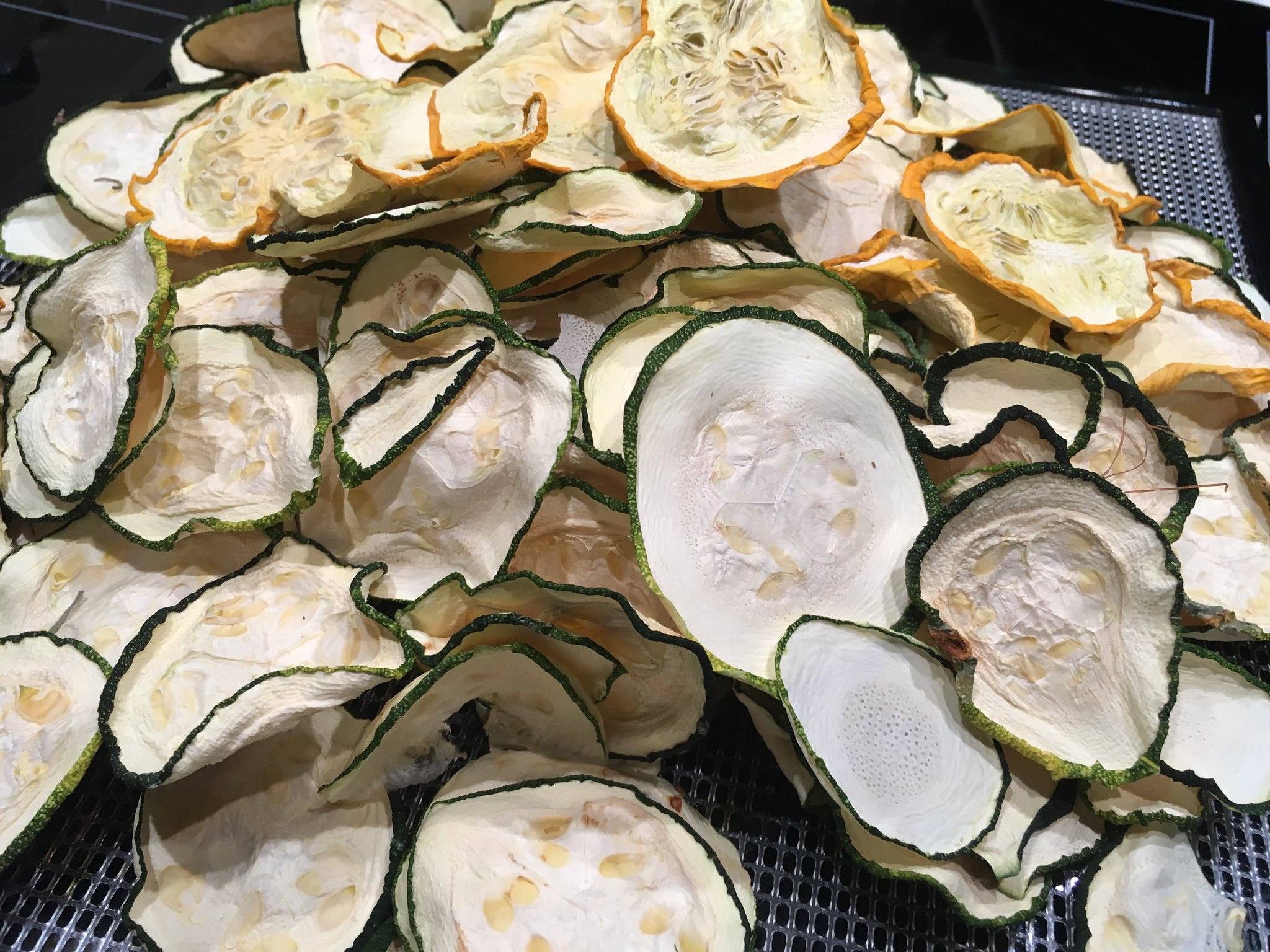 Dried Zucchini inside the best food dehydrator