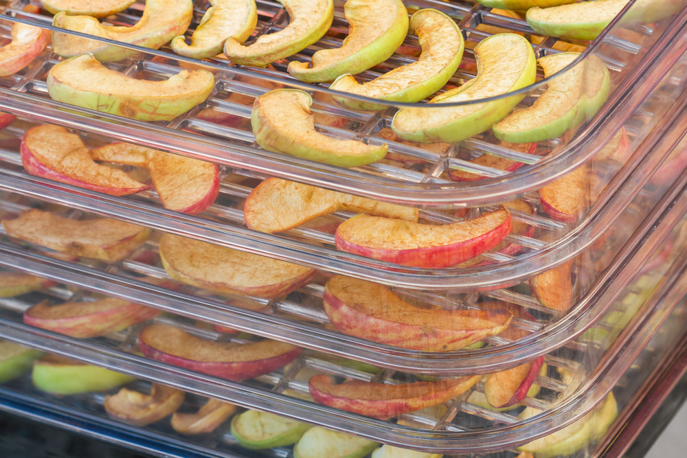 Inside the best food dehydrator is some nutritious fruits