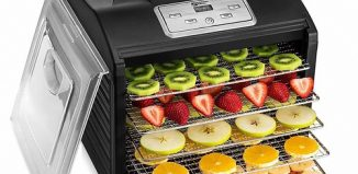 Inside Best Food Dehydrator are some nutritious fruits
