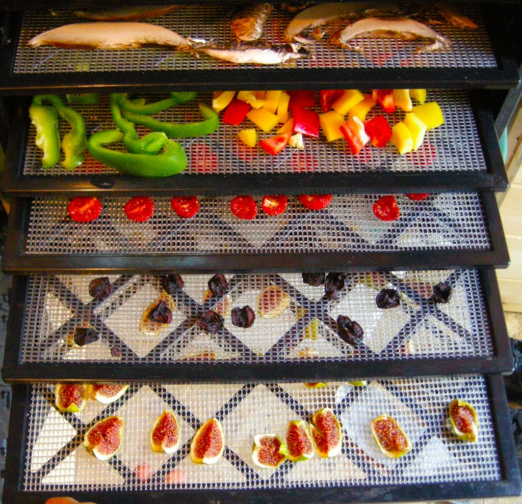 Fruits onside the best food dehydrator